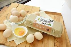 補充葉酸好簡單!台灣好農推廣食用葉酸蛋