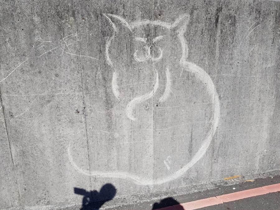 基隆市和平島社寮橋的圍牆,被神祕畫家繪製各式各樣的貓咪圖案,儼然變成一個「貓咪畫廊」。(張穎齊翻攝)