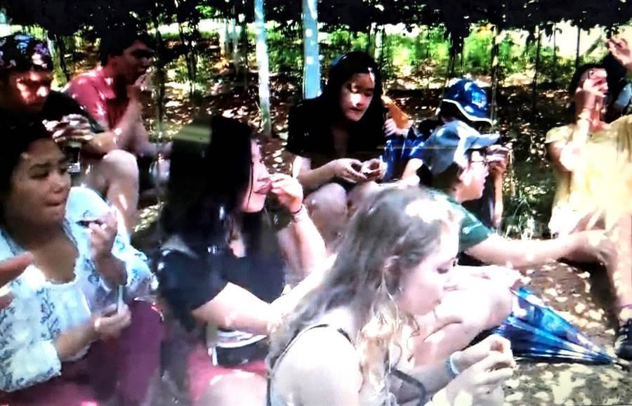 ▲美國大學生在埔里參觀百香果園,並在果園內品嚐新鮮百香果。(楊樹煌攝)