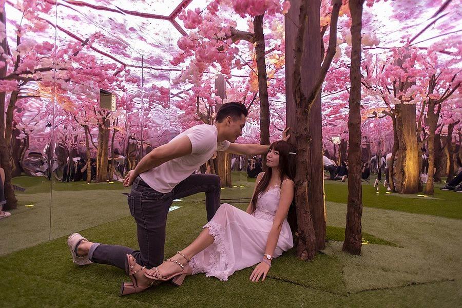 『幻鏡花園』打造全鏡面六角鏡屋,浪漫奇想就此展開,與另一半迷失在這片一望無際的花海之中吧!