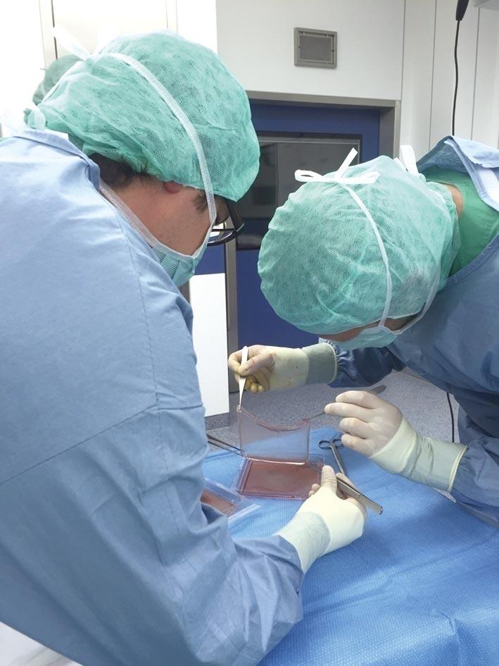 圖為再生醫學新生皮膚研究。圖/美聯社