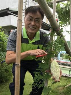 三峽區所綠屋頂 種蔬果兼顧生態與環保