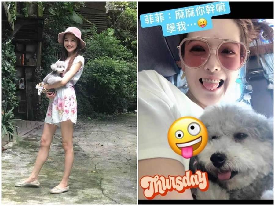 姚采穎對6歲的狗女兒「小菲菲」非常疼愛。