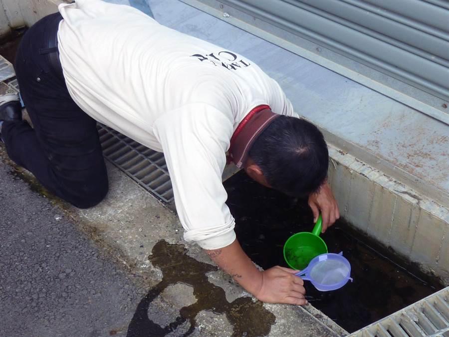 台南市登革熱防治中心持續進行登革熱病媒蚊戶外孳清。(洪榮志翻攝)