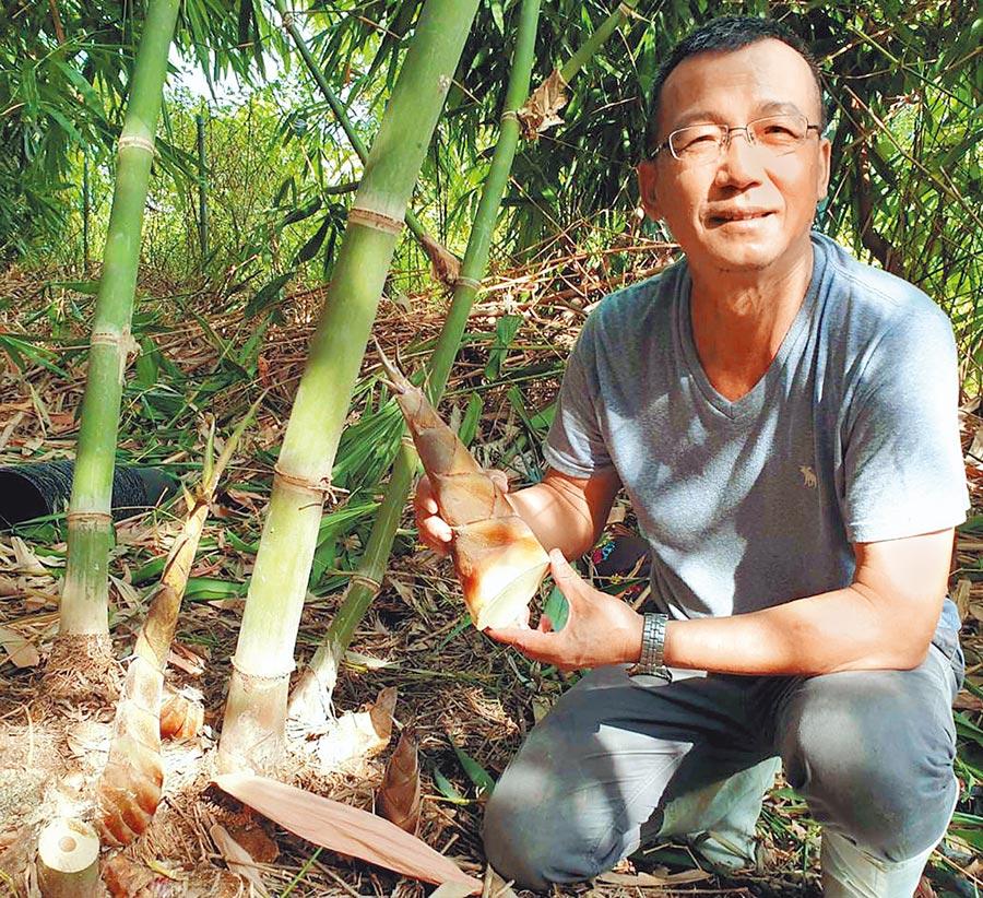 陳景行從公所祕書工作退休後,開始種植甜龍筍,也推廣鼓勵其他農友種植。(潘建志攝)
