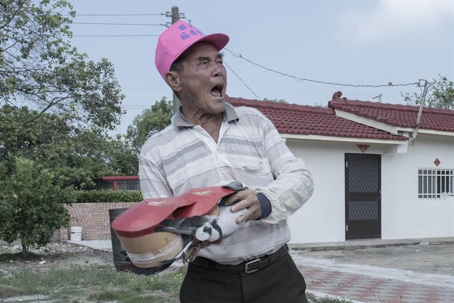 台南溪北地區農民放鴿笭。(李立中提供)