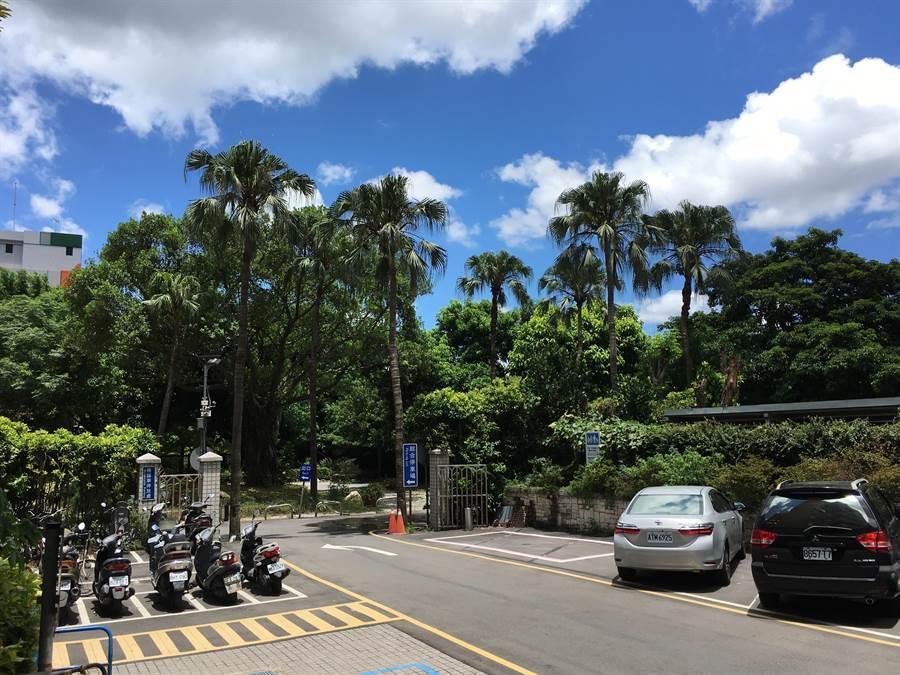 菲律賓東方海面熱帶性低氣壓(TD14)最快今(4)日下半天形成「利奇馬」颱風;周二(7日)之前,台灣主要為午後雷陣雨天氣型態。(游昇俯攝)