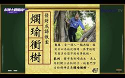 網諷「爛瑜衝樹」半個月後 韓國瑜反應竟是⋯