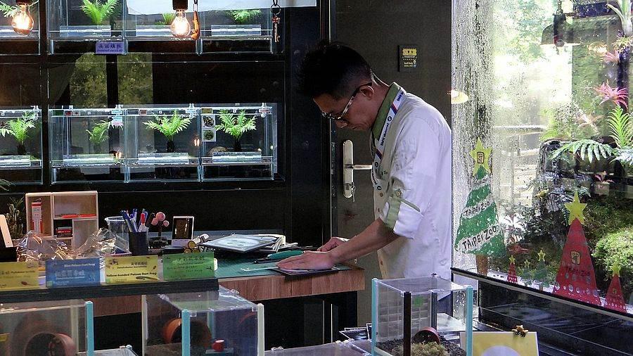 台北市立動物園有一位偉大的「蛙爸爸」,他是在兩棲爬蟲動物館擔任箭毒蛙保育員的楊志平。(台北市立動物園提供)