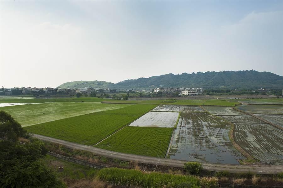 甲安埔187公頃的「假山坡地」,將於年底前解編,有助於當地發展。(陳淑娥攝)