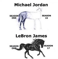 NBA》詹姆斯與喬丹誰強? 兩匹馬看懂一切