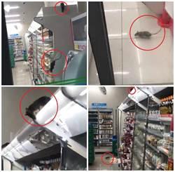 網友爆有老鼠 澀谷便利店立即道歉 停業消毒