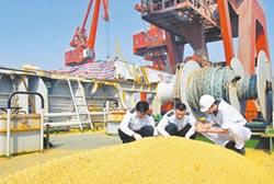 陸暫停購美農產品 不排除加稅