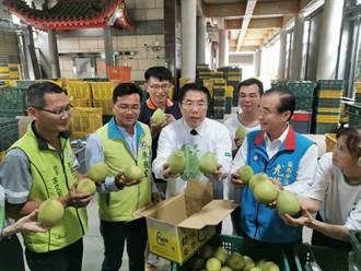 麻豆文旦產季將至 南市海外拓銷前進加拿大