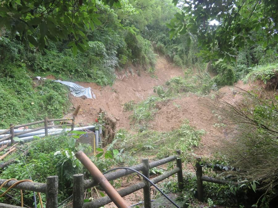 大坑1號步道,因近期大雨造成部分路段有掏空及土石滑落。(陳世宗翻攝)