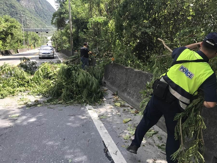 地震加上風勢大,蘇花公路出現路樹倒塌。(王志偉翻攝)