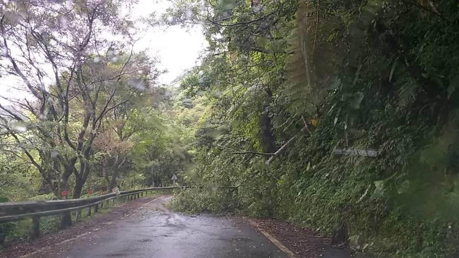 福山植物園聯外道路,因道路邊坡土石鬆動,阻礙道路通行。(胡健森翻攝)