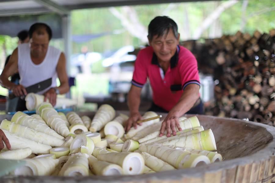 今年麻竹筍價格不振,繼帶殼麻竹筍後,農委會擴大去殼麻竹筍保價收購作業。(許素惠攝)