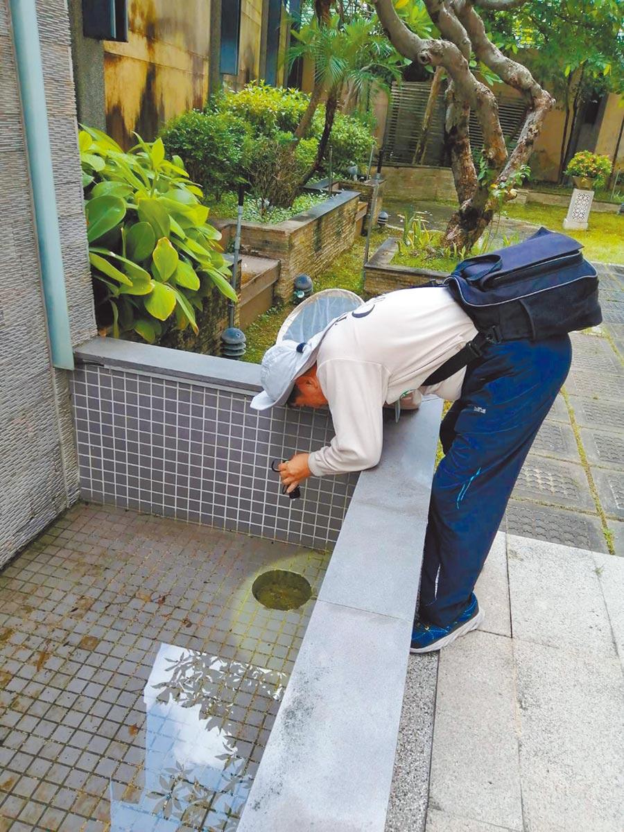 台南市新增1起本土登革熱病例,台南市登革熱防治中心積極巡查孳生源,也提醒民眾颱風逼近、大雨可能再來,要隨時清除積水容器。(曹婷婷攝)