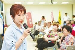 洪秀柱:願為國民黨挑戰艱困台南選區