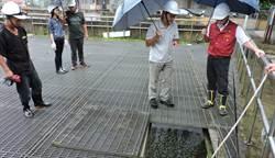 強颱來襲 區長視察中和南山溝分洪道
