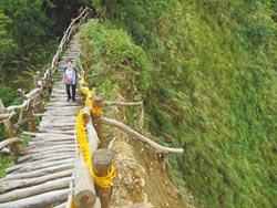 大坑1、3號登山步道 崩塌暫封閉