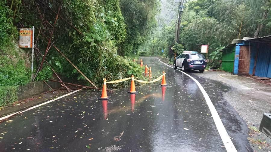 新竹縣五峰鄉累積雨量超過200毫米,部分路段出現路樹傾倒、小型坍方。(莊旻靜翻攝)