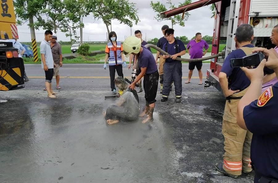 司機被救出時只有輕傷,但整個人都變成泥人,狼狽不堪。(劉秀芬翻攝)