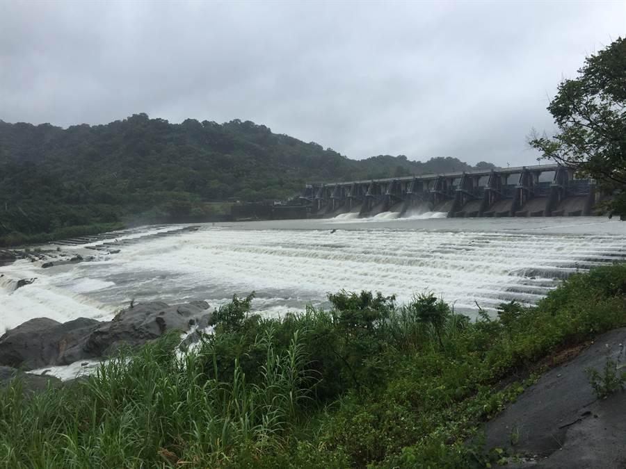 石岡壩一早開啟水門調節,滾滾洪流往下游宣洩,場面壯觀。(王文吉攝)
