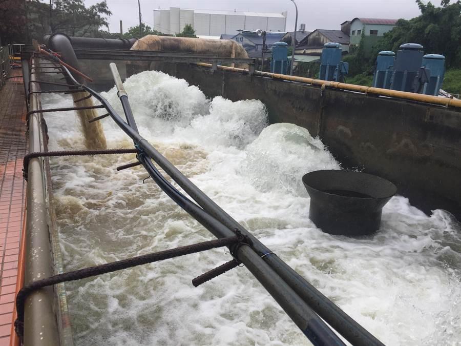 豐原給水廠南幹渠取水口的原水略顯黃濁,並帶有懸浮物質。(王文吉攝)