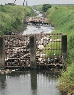 無盡垃圾湧進大排 水閘門外還架鐵門攔截累積爆量