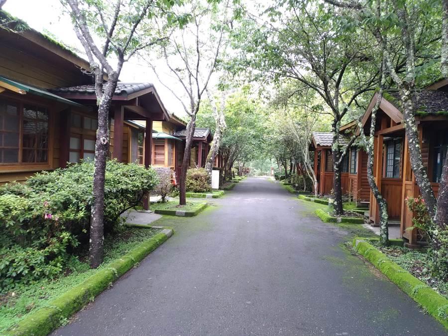 利奇馬遠颺,林務局管理的森林育樂場陸續開放,圖為大雪山住宿木屋。(圖/農委會提供)