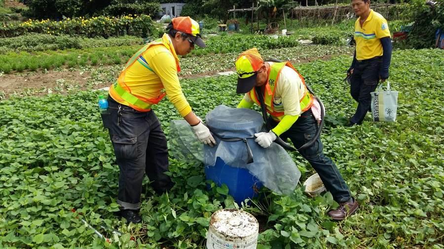 颱風過後有豪大雨接力,環保署請民眾清除積水容器,防範登革熱。(圖/台北市環保局提供)