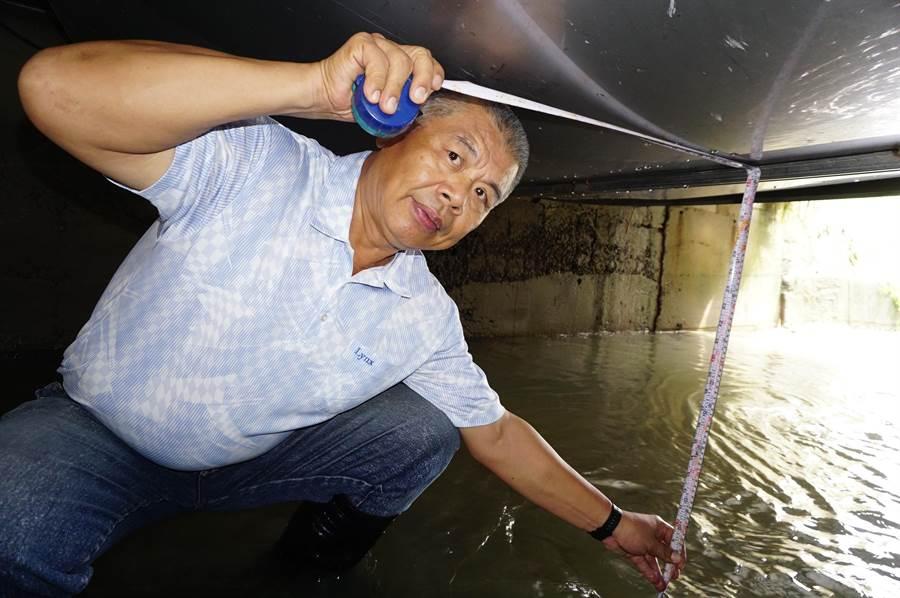 市議員蕭隆澤下探3公尺深的溝渠,勘查淹水原因,痛批橋下附掛管線釀禍。(王文吉攝)