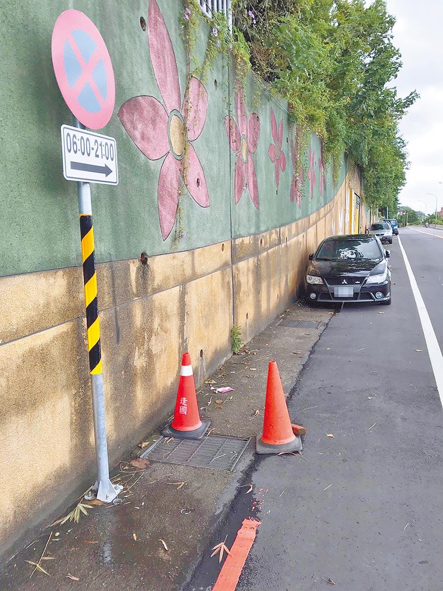 樹林中山路三段原畫設允許停車的白線,最近卻在白線兩側終點處加上禁止日間停車的標誌。(陳俊雄攝)