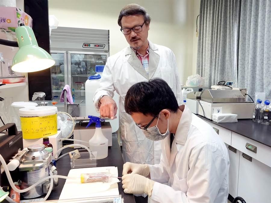 中正大學教授張德卿(左)研究攝護腺癌新療法,成果登上著名國際期刊。(中正大學提供)