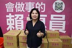 綠營初選壞同志感情 台南立委選情難料