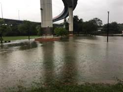 彰化市也蓋滯洪池了 ?景觀公園汪洋一片錦鯉魚離家出走