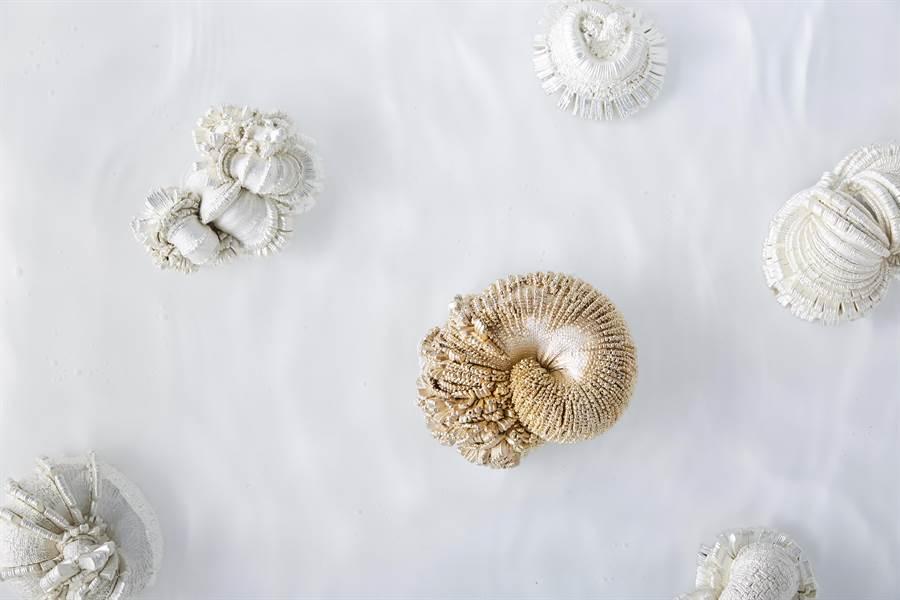 大葉大學造藝系校友陳映秀的創作從澎湖與海洋出發。(謝瓊雲翻攝)