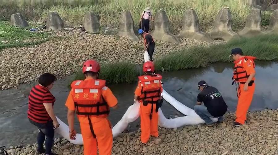 海巡署第八岸巡隊13日接獲報案稱南崁溪出海口有油汙,立即派員前往處理。(邱立雅翻攝)