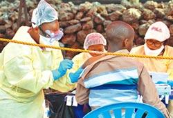 伊波拉解藥問世 存活率逾9成