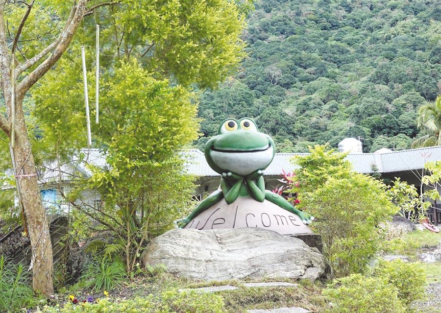 小雨蛙生態民宿,體驗採摘趣(生態導覽、住宿、蓮花DIY體驗)。圖/石永芳提供