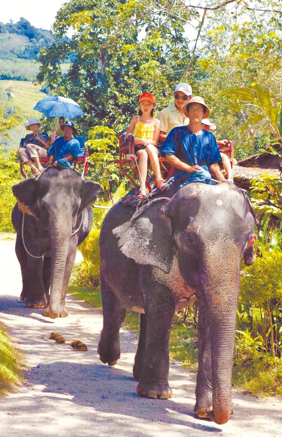 遊客在泰國騎乘大象旅遊。(中新社資料照片)