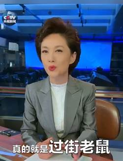 香港社會失序 央視主播:有良知的中國人都不能接受