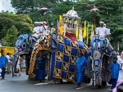 大象遊行超壯觀 華服掀開眾人落淚