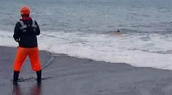 台東戲水遭捲走 尋獲失蹤學生遺體