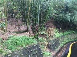 土城媽祖田龍泉路淹水頻傳 民代邀集農業局改善排水系統