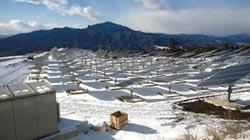 力拚转型 太阳光建太阳能电站
