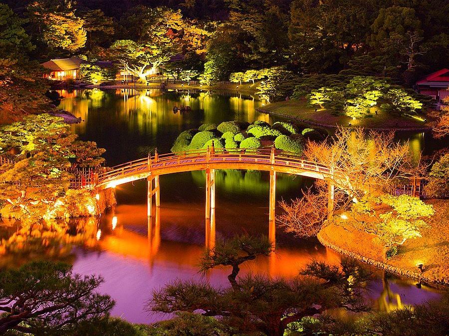 「栗林公園」的夜楓是高松別具特色的賞楓名所