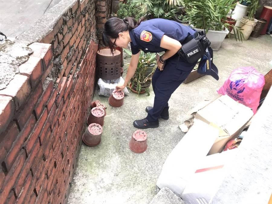 樹林警方動員清除孳生源,防堵登革熱。(葉德正翻攝)